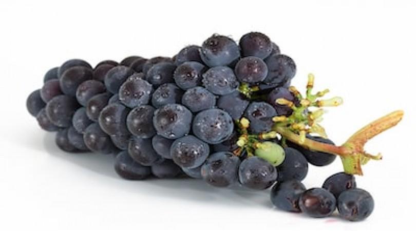 Prevenzione malattie: meglio un bicchiere di vino rosso o integratori a base di resveratrolo?
